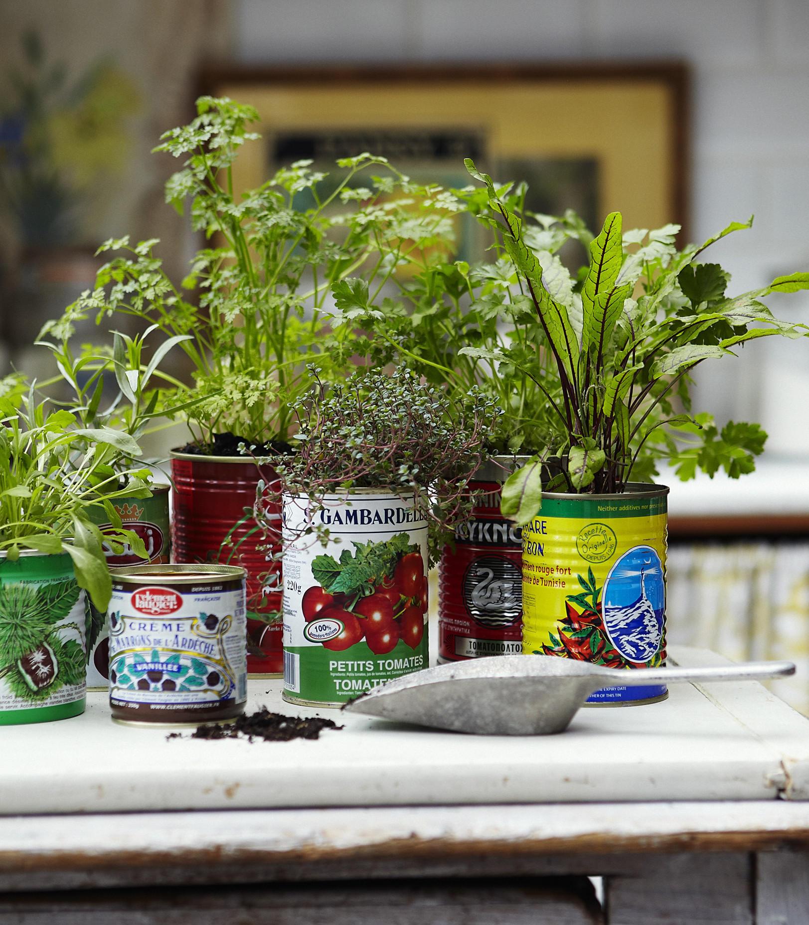 pot-tanaman-3
