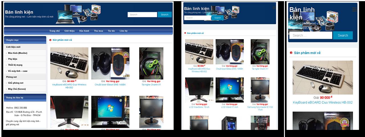 Trang web công ty tin học máy tính BĐG