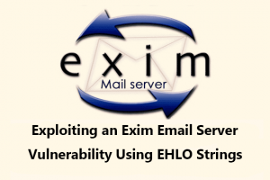 Some useful general variables in Exim